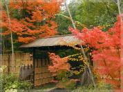 竹林と石畳の料亭 喜祥(きしょう)